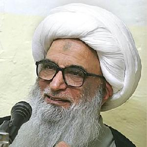 Ayatollah Bashir al-Najafi: Shia leaders have frequently ban...